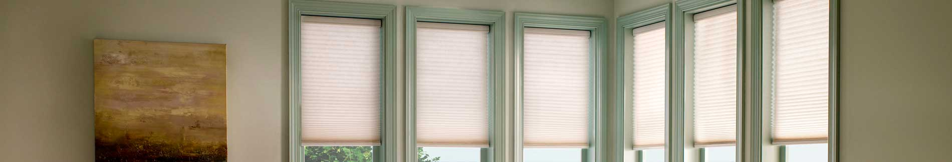 Lutron Shades and Blinds